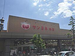 サンヨネ 本店(536m)
