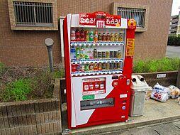 宮崎県宮崎市新城町の賃貸マンションの外観