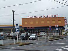 KASUMI(カスミ) 東大沼店(630m)