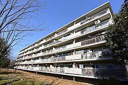 男山第三住宅207棟[5階]の外観