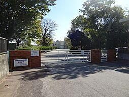 小学校新川小学校まで634m