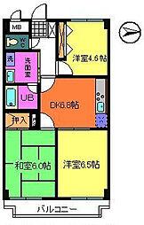 グランシャトレーDAIWA[8階]の間取り
