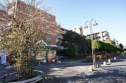 東京都世田谷区玉川3丁目の賃貸マンションの外観