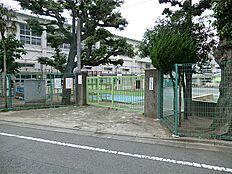 九品仏小学校(約900m約12分)