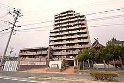 グランドパレスネオステージ守恒[4階]の外観