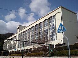 ワコーレ神戸三宮トラッドタワー[15階]の外観