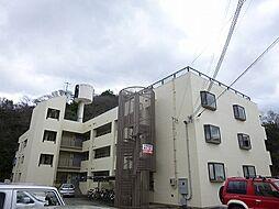和歌山県和歌山市秋葉町の賃貸マンションの外観