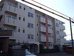 菊園ハイツ[3階]の外観
