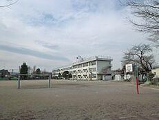 小学校昭島市立 拝島第一小学校まで298m