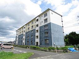 浅川団地300棟[303号室]の外観