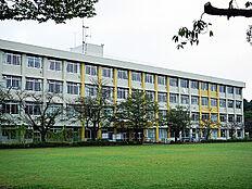 多摩市立南鶴牧小学校(737m)