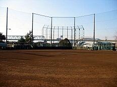 夢の島 野球場