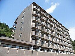 アルトラマンション茄子川 C棟[5階]の外観