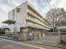 小学校 550m 武蔵野市立第四小学校