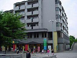 サファーレ中川[407号室号室]の外観