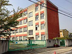 名古屋市立極楽小学校:徒歩5分(370m)