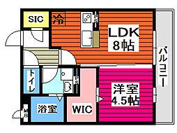 ウィステリア八幡 3階1LDKの間取り