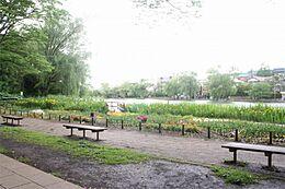 石神井公園(1854m)
