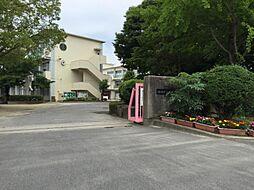 大門小学校(約400m)
