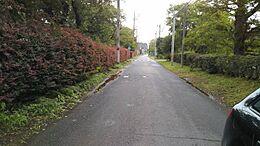 現地(2017年8月)撮影