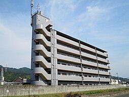ココ川崎[4階]の外観