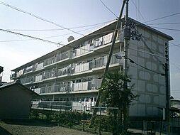 ハイツ堤下[1階]の外観