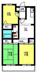 千葉県松戸市八ケ崎7丁目の賃貸マンションの間取り