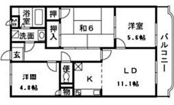 神奈川県厚木市妻田南1丁目の賃貸マンションの間取り