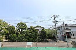 道路面から敷地が上がっており、開放感がございます。正面のお庭の樹木が綺麗です。