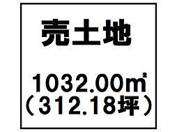 小松島市芝生町字横須