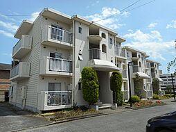 神奈川県南足柄市関本の賃貸マンションの外観