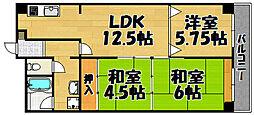 兵庫県川西市栄町6丁目の賃貸マンションの間取り