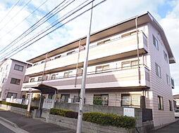 広島県広島市南区向洋新町1丁目の賃貸マンションの外観