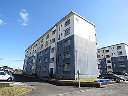 浅川団地300棟[304号室]の外観