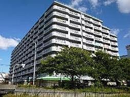ターミナルマンション朝日プラザ堺(市小学校区)[6階]の外観