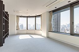 上品な新装、パノラマビュー悠々たる隅田川 スカイライトタワー[26階]の外観