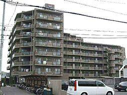 朝日プラザ鳴神407号[4階]の外観