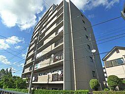 千葉県松戸市新松戸東の賃貸マンションの外観