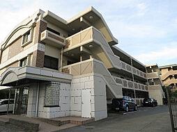 ステラ・コート壱番館[3階]の外観