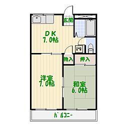 東京都葛飾区南水元1丁目の賃貸マンションの間取り