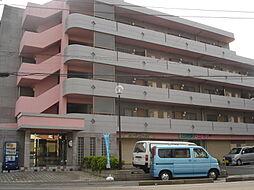 アゾラーレ五井[503号室]の外観