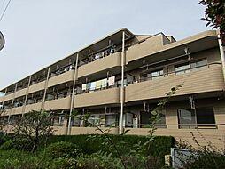 パストラルマンションMII[A403号室]の外観