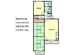 兵庫県神戸市垂水区馬場通の賃貸マンションの間取り