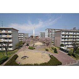愛知県稲沢市朝府町の賃貸マンションの外観