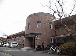 エルム松ヶ崎[1階]の外観