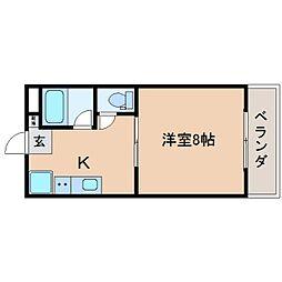 静岡県焼津市柳新屋の賃貸マンションの間取り