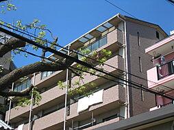 阪神本線 御影駅 7階建[703号室]の外観
