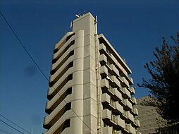 ベルメゾン本田[9階]の外観