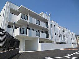 IBIZA SPRINGS[3階]の外観
