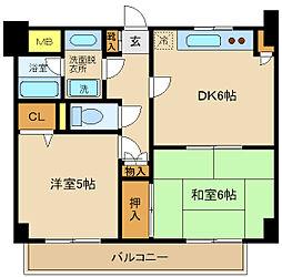 コスモ松戸胡録台[1階]の間取り